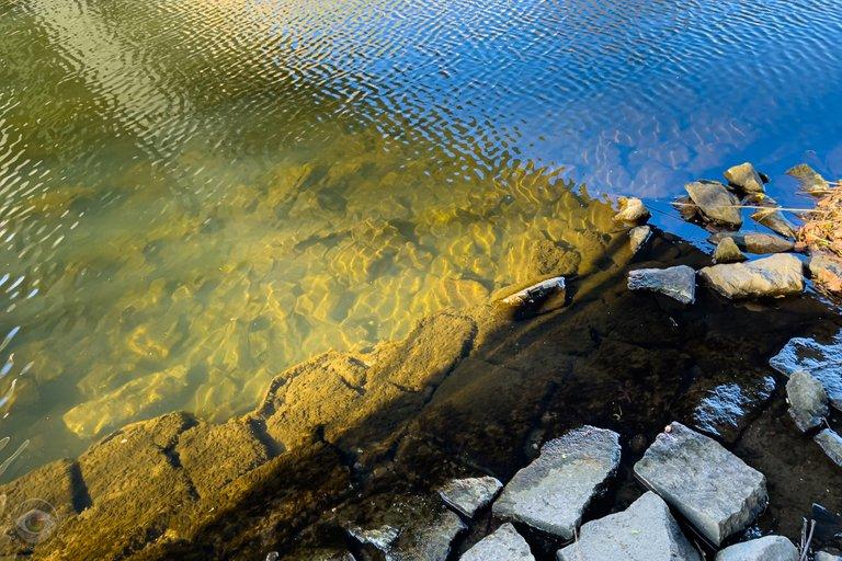 Clear River Spree