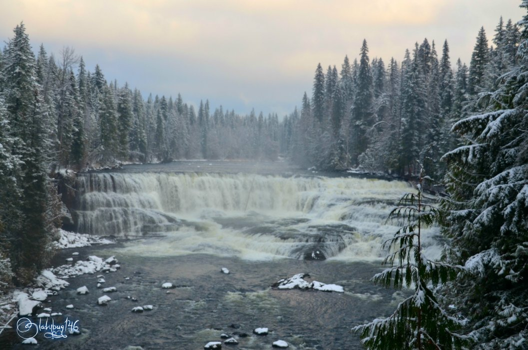 wells gray provincial park - dawson falls.jpg