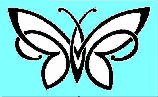 2020 Babyblue Logo Butterfly freedom native.jpg