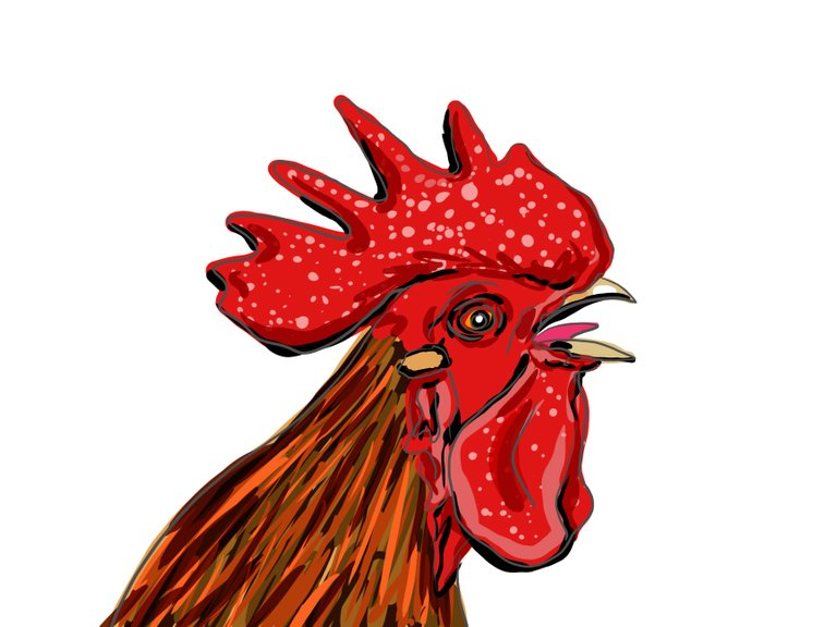 rooster(693).jpg