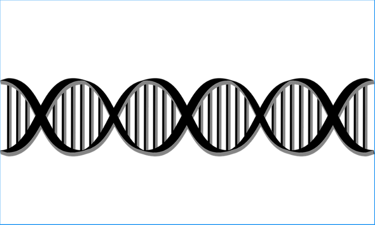 DNA BS.png