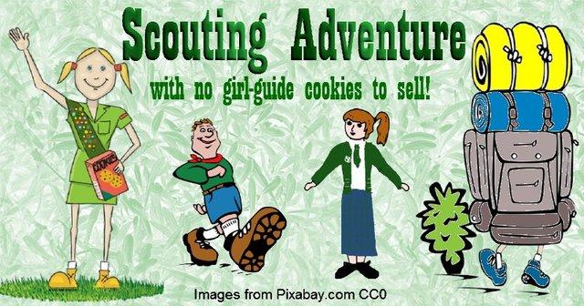 ScoutsBanner.jpg