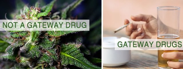 gateway-drug.jpg