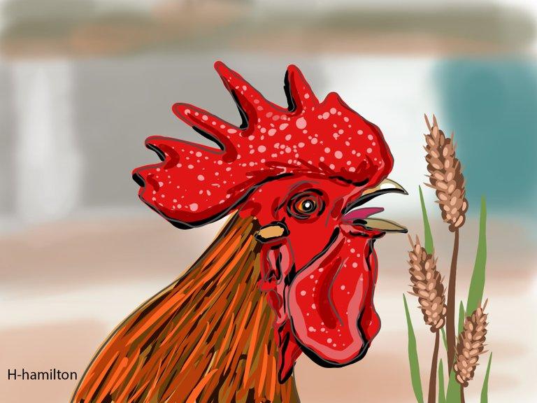 rooster(687).jpg