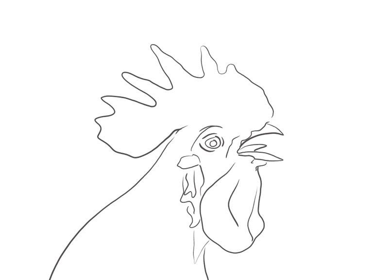 rooster(690).jpg