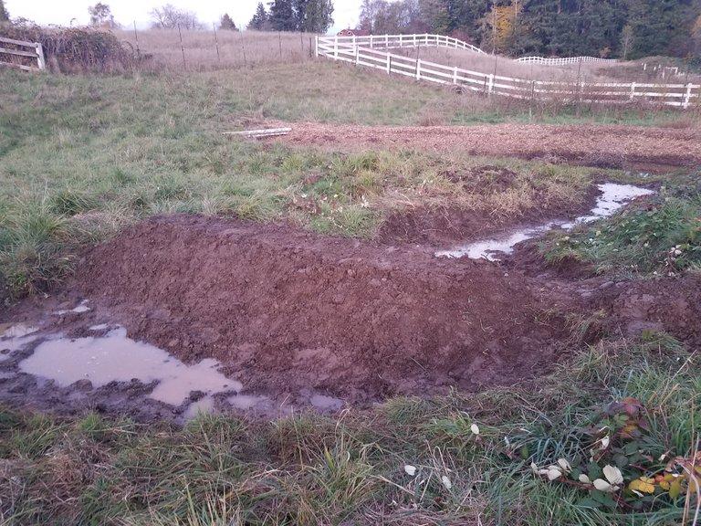 new-dam-pond.jpg