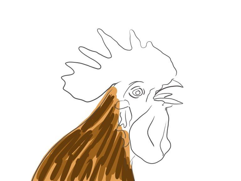 rooster(697).jpg