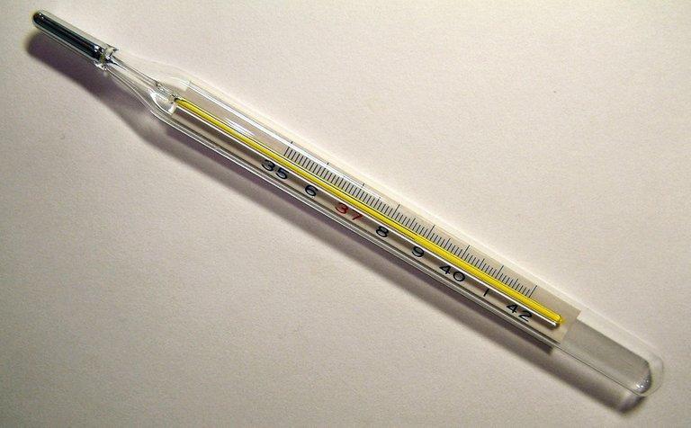 Thermometer fever 4.0  Menchi.JPG