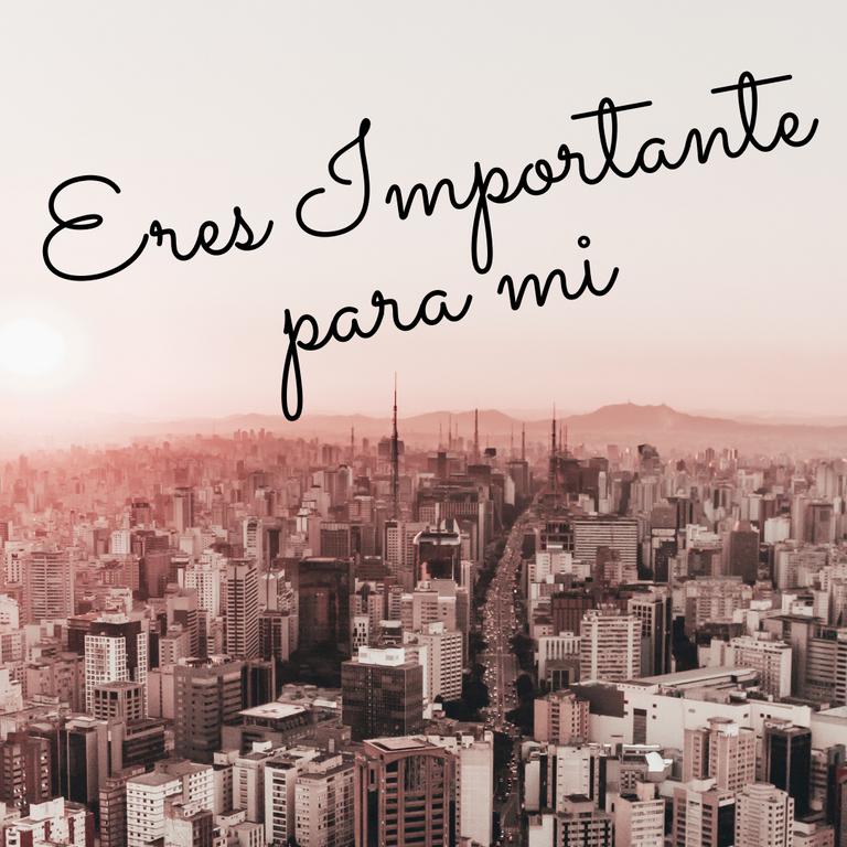 Eres Importante para mi.png