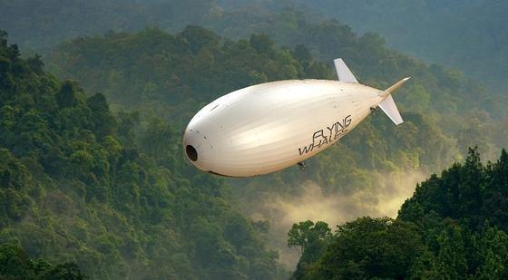 14750_ZeppelinFliegenderWal.jpg