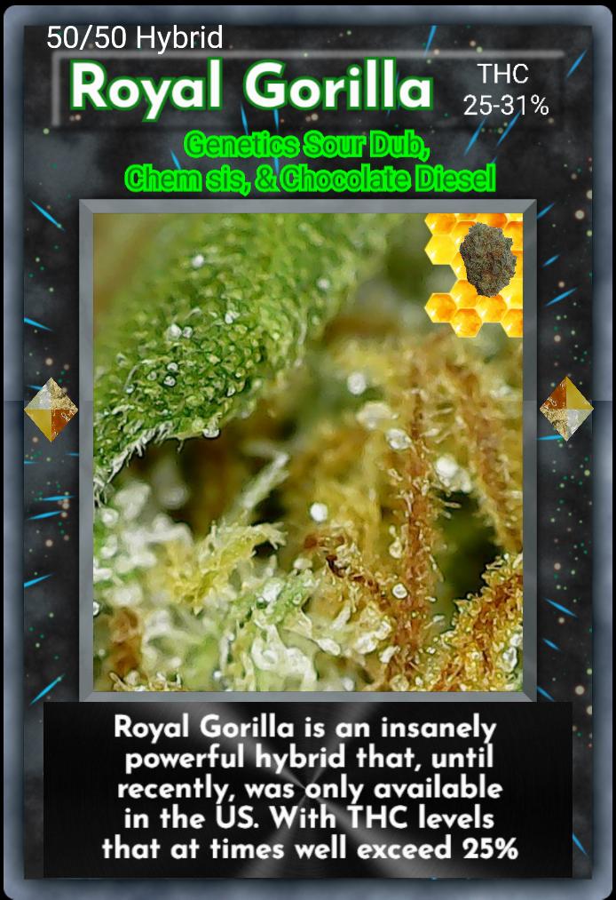 nft_royal_gorila.png