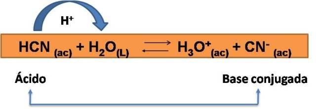reacción 1.jpg
