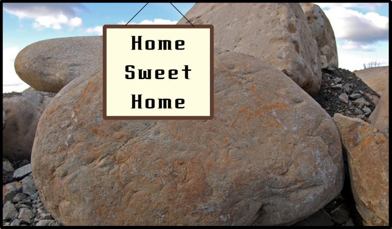 Living under a rock.  Home sweet home.