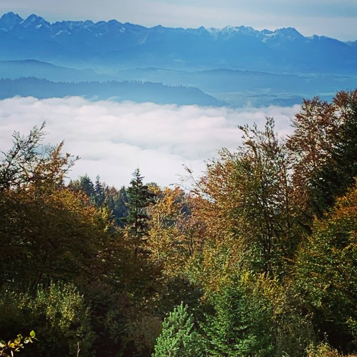 The Tatras viewed from the Gorce mountains, Poland