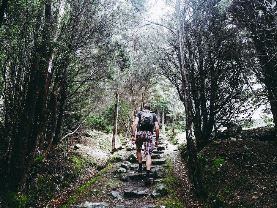 The Springs, Mt Wellington