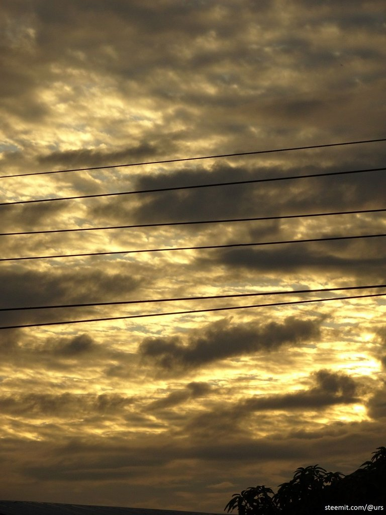 yellow sky 2.jpg