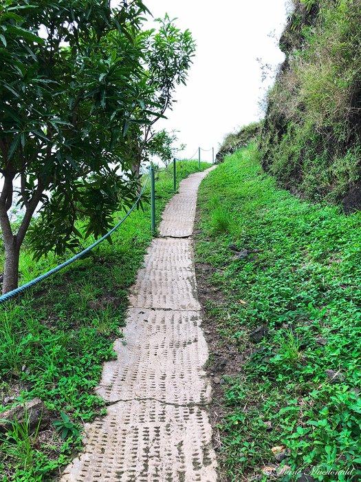 Magic Mountain Path.jpg