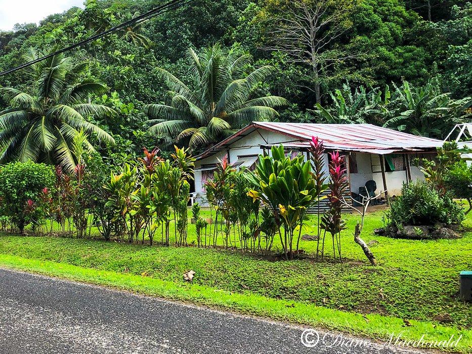 small house huahine.jpg