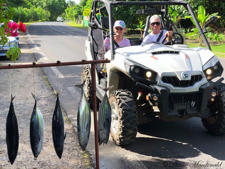 Fish and Quad ATV.jpg