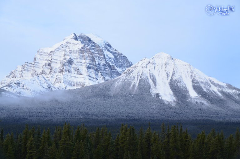 bow valley parkway4.jpg