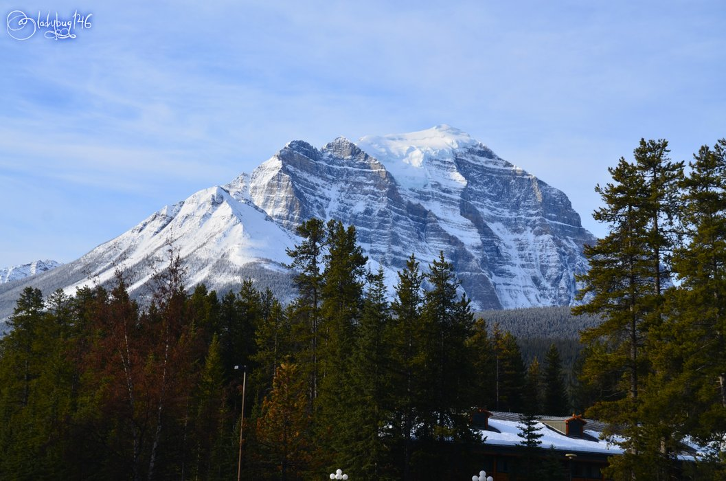 bow valley parkway7.jpg
