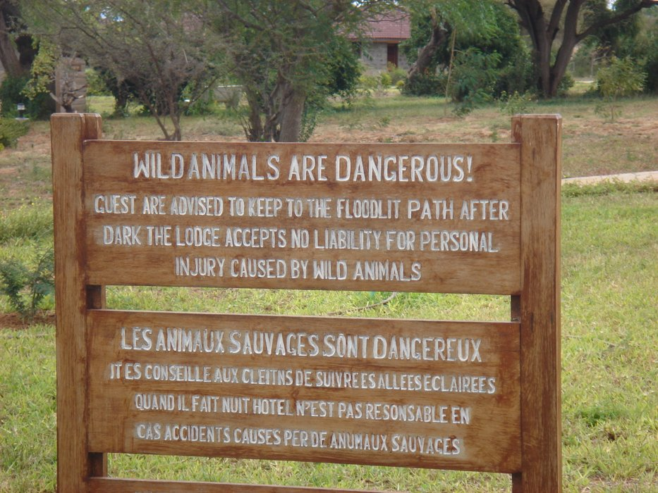 WildAnimalsAreDangerous.JPG