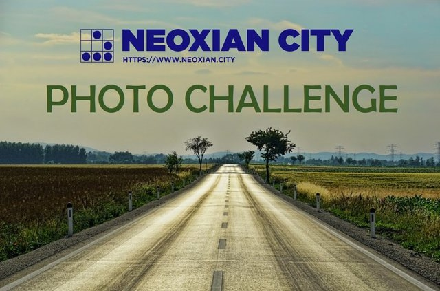 NEO Photo Challenge.jpg