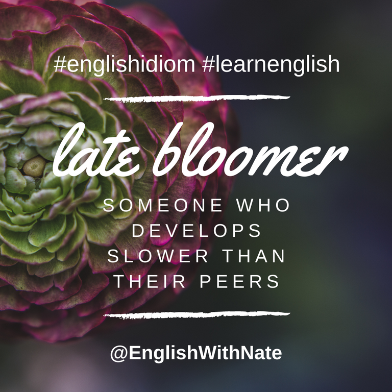 late bloomer  englis with nate.png