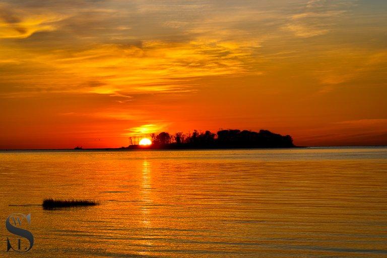 1 1 Sunrise behind Charles Island.jpg