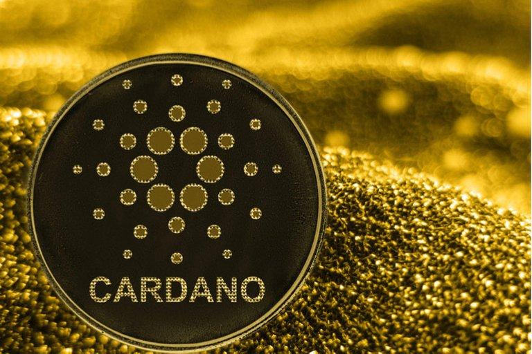 Cardano_800x533_L_1556444760.jpg