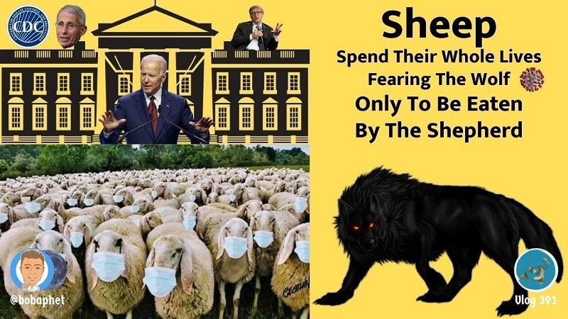 Sheep Spend Their Whole Lives Fearing The Wolf. Only To Be Eaten By The Shepherd