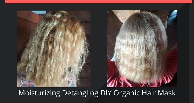 Moisturizing Detangling DIY Organic Hair Mask.png