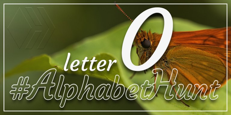 Hive AlphabetHunt - Letter O