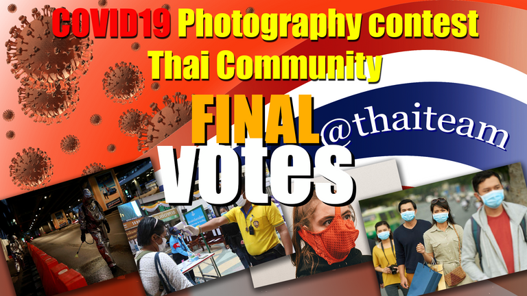 COVID19%20Photography%20fianal%20votes.png