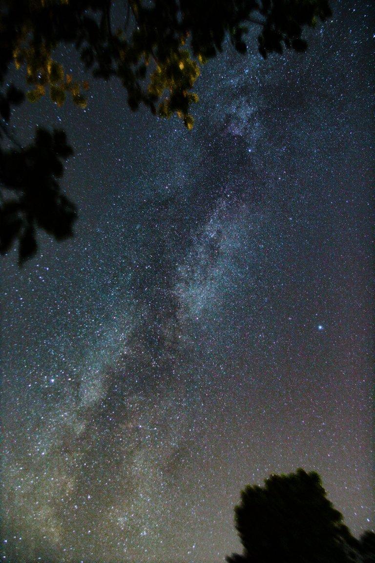 Milky 17mm.jpg