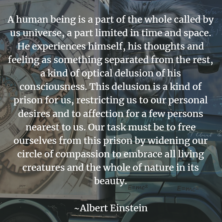 Einstein1.png