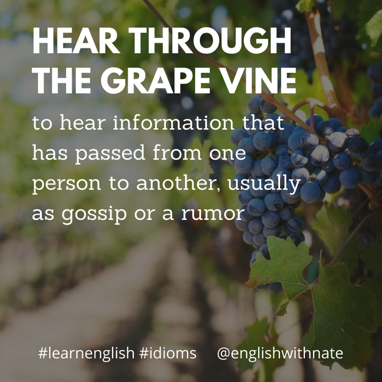 Hear it though the grape vine  English With Nate.png