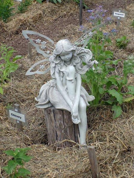 New Herb - fairy in Row 2 crop June 2021.jpg