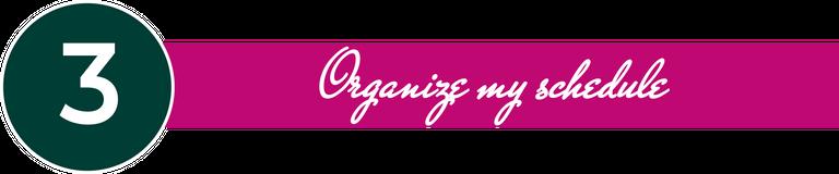 organizee.png