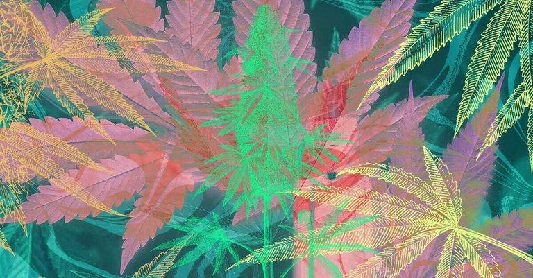 Best-Songs-About-Marijuana-Facebook-image.jpg