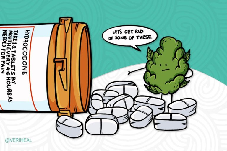 Evolving-Research-Supports-Medical-Cannabis-Treatment-For-Opioid-Dependence.jpg