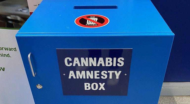 1579189640558_cocannabisamnestybox__WIDE.jpg