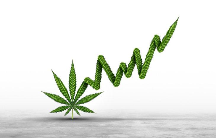 Best-Weed-Stocks.jpg