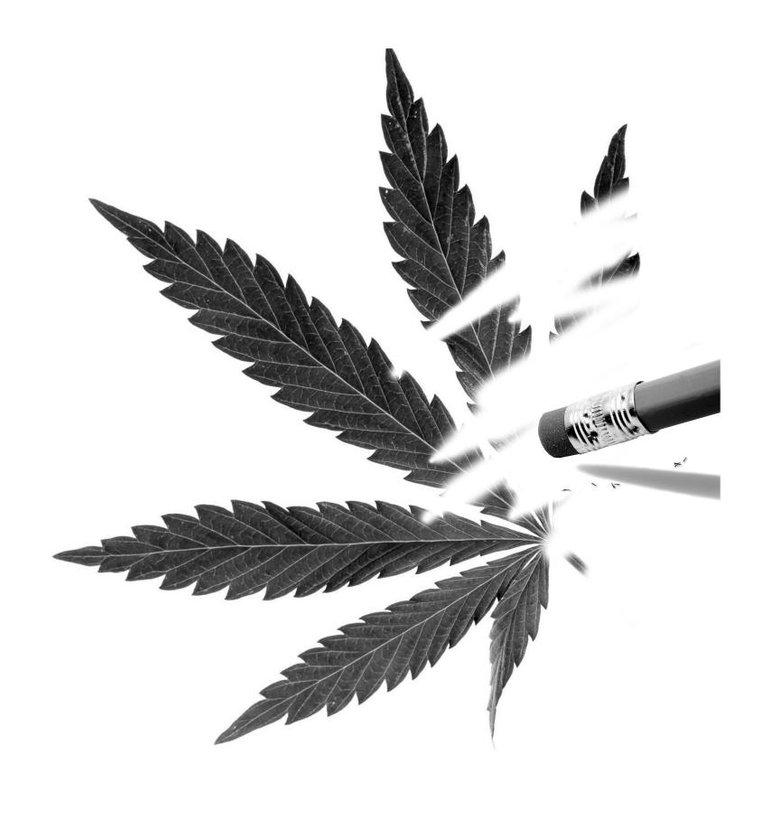 Legal Marijuana Oregon Measure 91.jpg