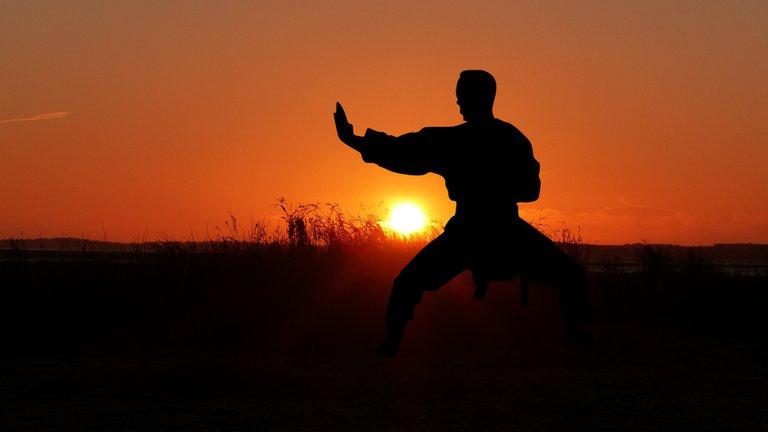 A martial artist practicing martial arts.jpg