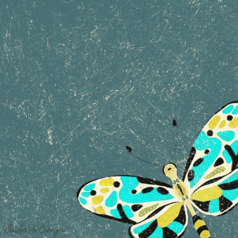 enjoy butterflies.GIF