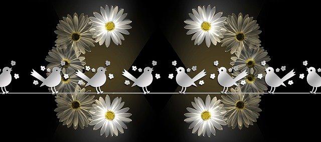 daisy1875042_640.jpg
