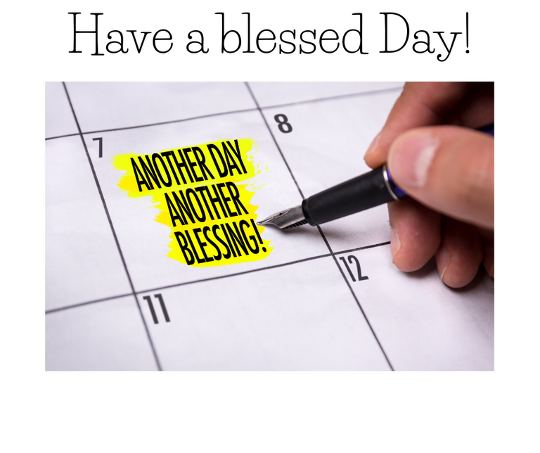 Have a Blessed Day.png