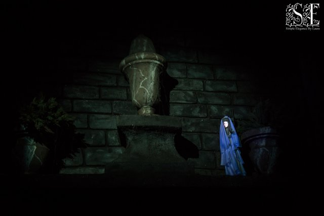 Haunted Mansion 17.jpg
