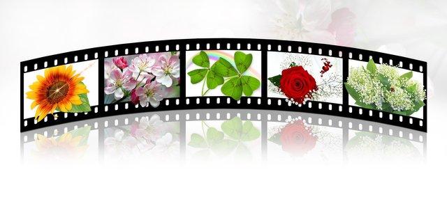 filmstrip2208127_1920.jpg